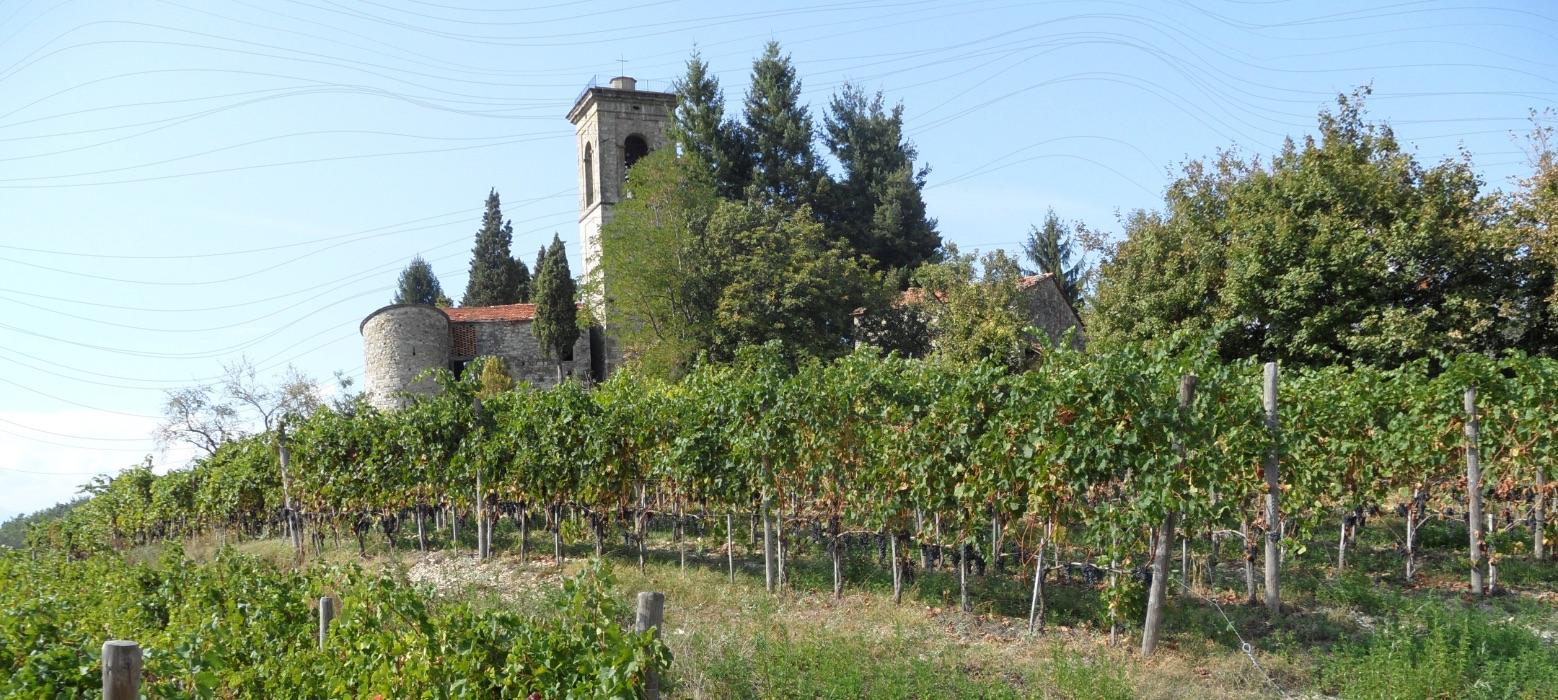 monastero-frati-bianchi-campanile-e-vitigno-mobile